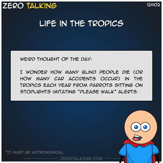 life-in-the-tropics-zero-dean