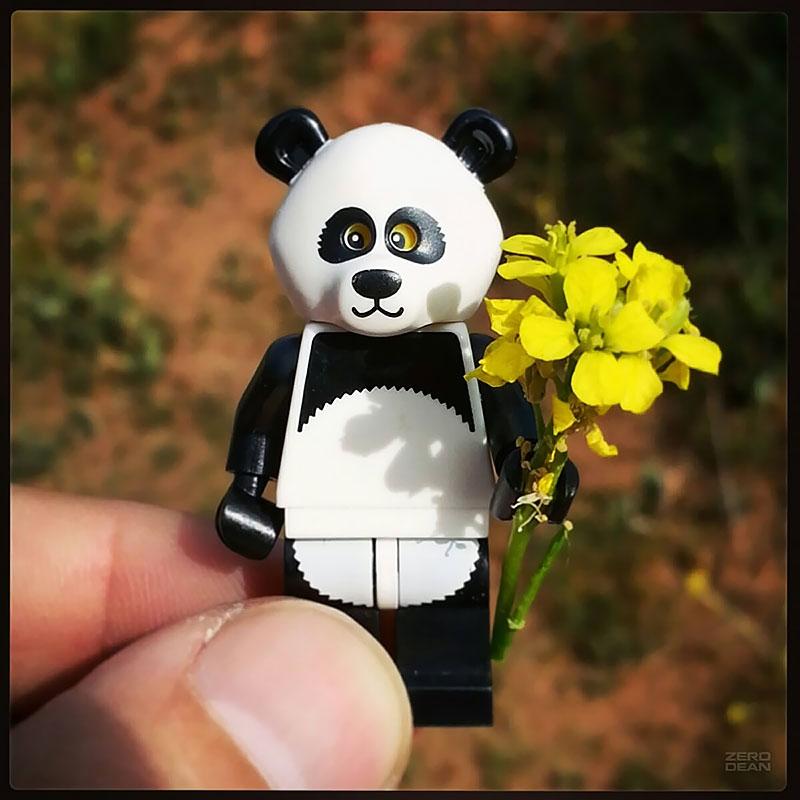 romantic-panda-zero-dean